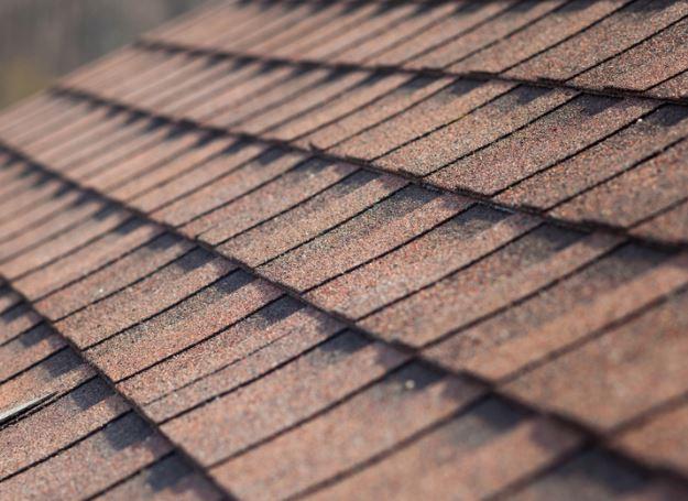 new roof ut